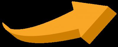 S365 orange arrow